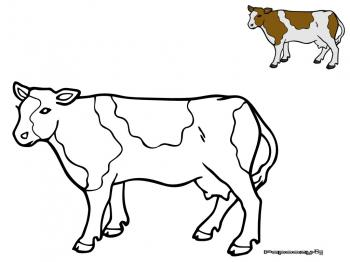 Pin coloriage vache 3 10 from 52 votes 4 53 on pinterest - Dessin vaches ...